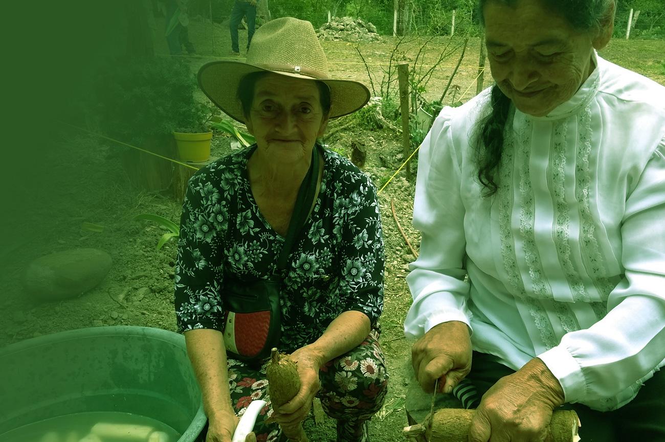 Fundación Colombia calidad de vida